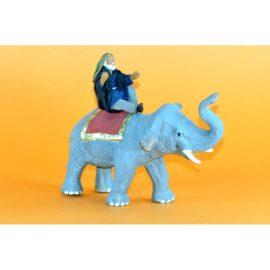 Uomo su elefante