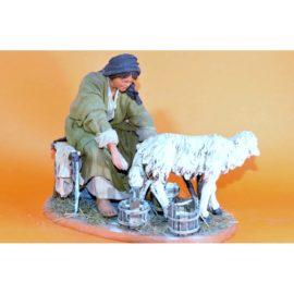 Donna che munge pecora